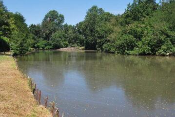 Il lagone arrivando a Casottole dalla strada poderale