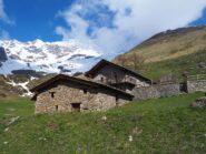 L'Alpe Toigne/Ansermin. Sulla destra in alto il M.te Rotondo.