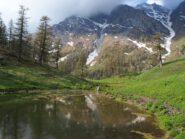 Nei pressi dell'Alpe Torrette.