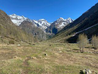 risalendo la lunga valle