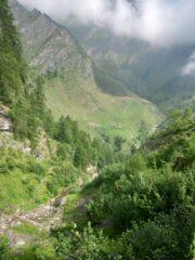 La lunga salita sul fianco del vallone dopo alpeggio crousenna in mezzo agli alberi. Si vedo giù in fondo l'alpeggio