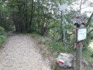 Bivio appena dopo l'abitato di Chignolo: destra Madonna del Frassino, sinistra Alben