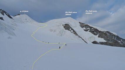 In giallo a traccia che sale il Vadret Pers fino alla selletta sotto il Piz Palü orientale.