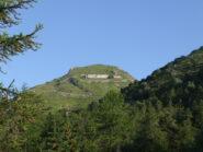 Monte Grai da Colla melosa