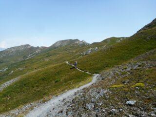 sentiero stretto ma in gran parte ciclabile