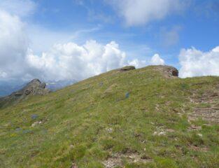 Cresta erbosa e L'Aran