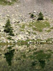 Riflessi sul lago Inferiore