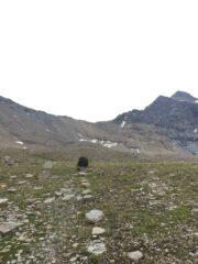 Il colle dal versante Valgrisa