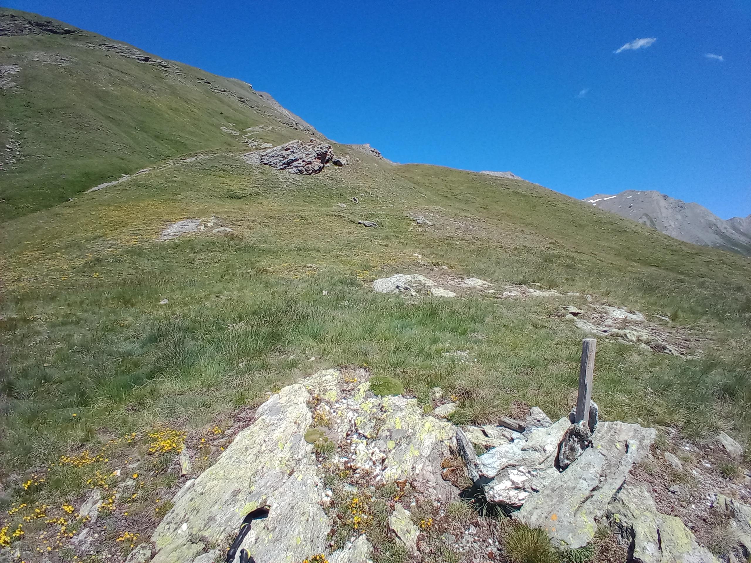 Segnavia da reperire per non sbagliare a scendere o salire dall'Alpe Plane (no sentiero)