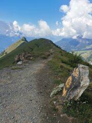 La cresta verso cima Longhede dal colletto