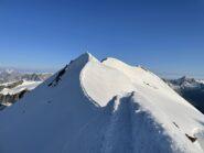 La cresta del Castore.