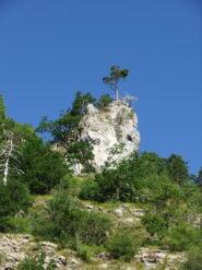 Pinnacolo roccioso