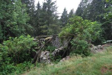 Ai ruderi di Orone, salendo al Colle della Colma sul D17