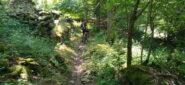 Si scende in bosco su tratti ciclabili