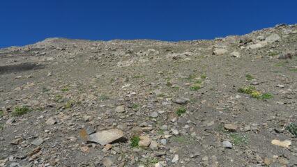 terreno di salita