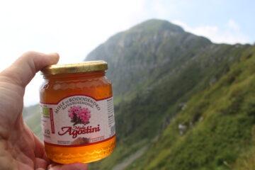 il miele per l'orso Francesco