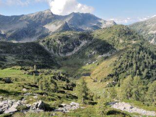 Alpe Camana