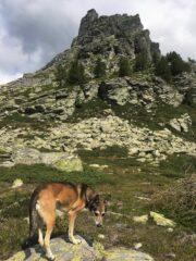Chastelberpass e Rothorn