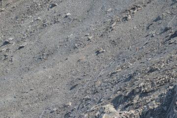 La traccia di discesa sulla pietraia dal Colletto della Rognosa