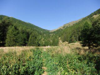 Radura nel bosco con il Col de l' Eveque in cima