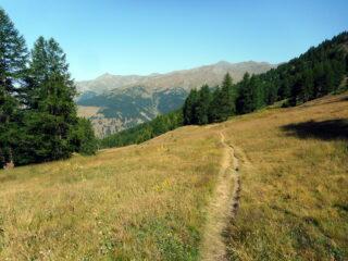 in salita meglio seguire il sentiero che sale più dolce verso la Collette de Gilly