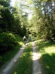 D1 percorso secondario per raggiungere il rifugio Chaligne