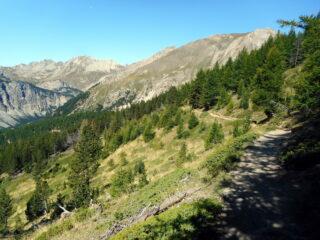 GR58 verso il col du Tronchet semplicemente splendido!