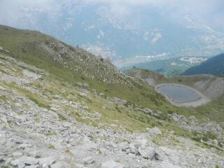 pecore verso il Lago Piccolo