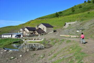 Alpe Pesse Desot (m 2009)
