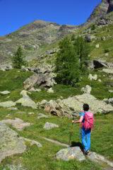 Salendo verso il Lac de Fond - In fondo la Pointe de la Crosatie