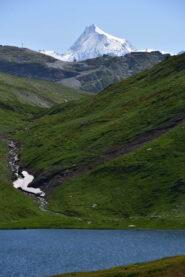 Mont Pourri (m 3779) dal Lago Verney