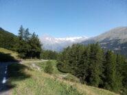 Scendendo dal Moncenisio, il massiccio della Vanoise.
