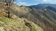 il crinale e rimanente parte dell'itinerario di salita per raggiungere il Monte Antola