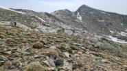 salendo per erba e pendii detritici verso l'inizio della cresta NO della Punta Violetta