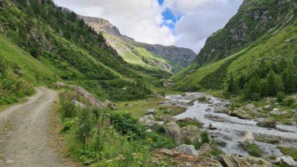 stradina  iniziale nel vallone che porta verso il Rifugio Bezzi