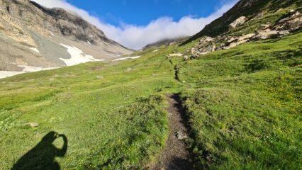 il bel vallone che porta al Col Vaudet