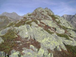 procedendo per cresta si avvistano due spuntoni rocciosi, nessuno dei due è la cima
