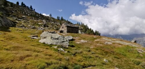 Alpe Bronne