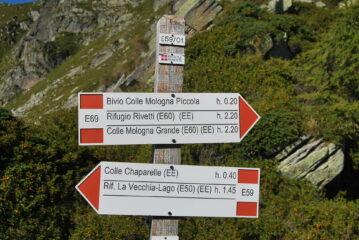 Le indicazioni al Colle Bosa; il bivio citato dovrebbe essere quello dove inizia il sentiero E69a che corre alto verso il Colle della Mologna Piccola