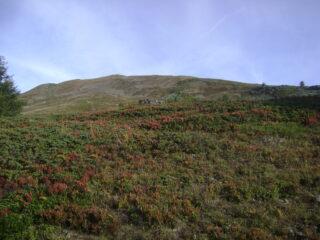il crinale della Tete Basse problematico per arbusti