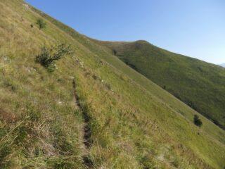 Sentiero sulle pendici del Mangiabo