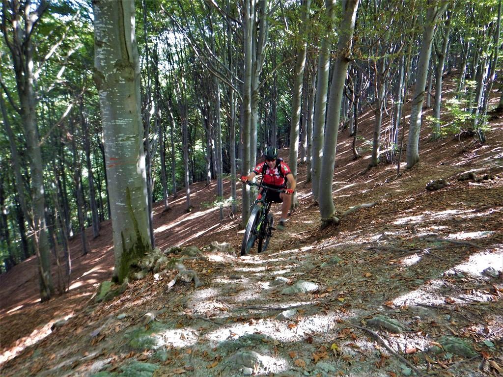Olocco free ride
