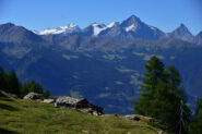 Alpe Tza de Viou con Gran Paradiso e Grivola sullo sfondo