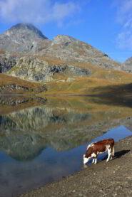 Lago Miserin e Bec Costazza