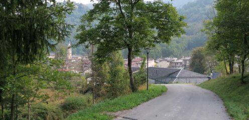 Roaschia