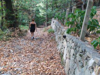 Maria nel sentiero sterrato che dalla strada dei Bassi, conduce in discesa verso Mondagnola.