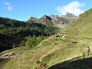 Poco oltre l'Alpe Bondolero