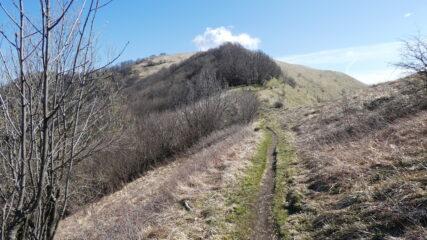 il facile crinale erboso in vista del Monte Buio
