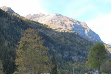 Alpenzù da Gressoney