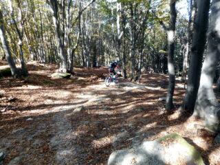 in discesa sul trail Pigna Olocco